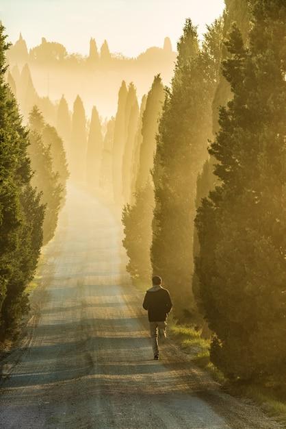 背の高い緑の木々に囲まれた通りを走っている孤独な人の垂直ショット 無料写真