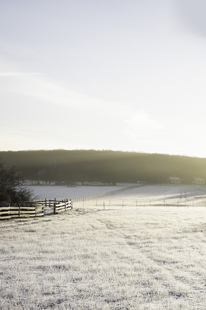 冬の雪と太陽の光に覆われた谷の垂直ショット 無料写真