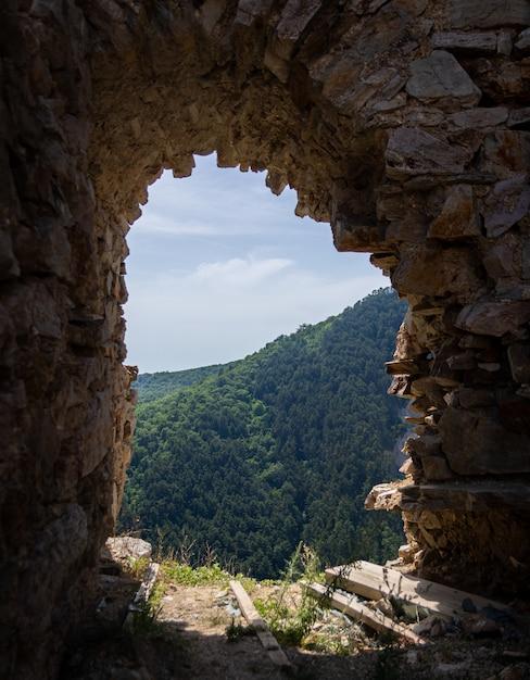 Вертикальный снимок проема в стене с прекрасным видом на древесный лес на заднем плане Бесплатные Фотографии