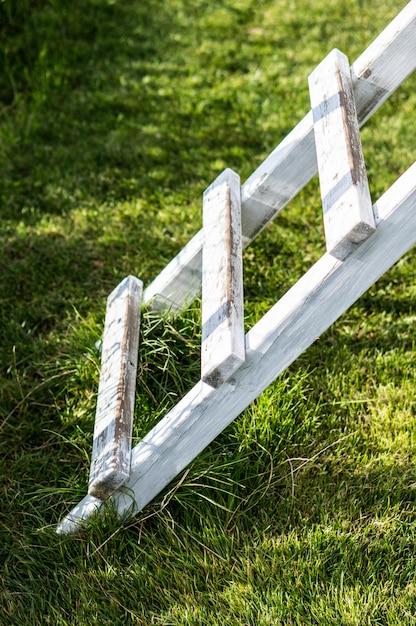 公園の芝生の上の白い木製のはしごの垂直方向のショット 無料写真