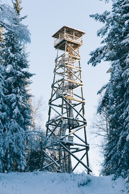雪に覆われた木の中で木製の望楼の垂直ショット 無料写真