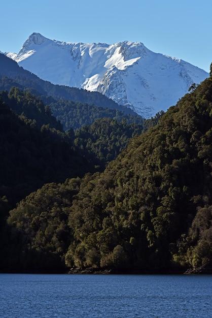 湖の近くの緑の森と雪山の垂直ショット 無料写真