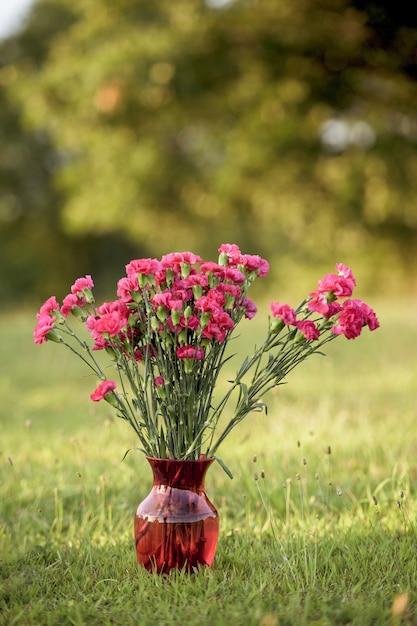 Вертикальный выстрел из розовых цветов в стеклянной вазе на травянистом поле Бесплатные Фотографии