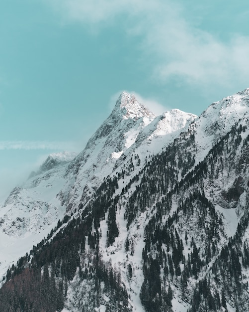美しい雪に覆われた山頂の垂直ショット 無料写真