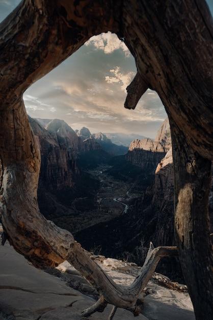Вертикальный снимок скалы под облачным небом за круглым стволом дерева Бесплатные Фотографии