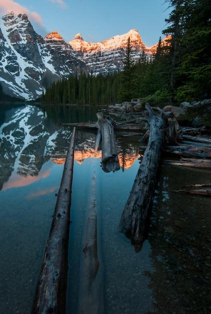 モレーン湖の山々を映した湖の木片の垂直ショット 無料写真