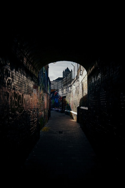 Vertical shot of a pathway in the middle of brick walls with graffiti on them Free Photo