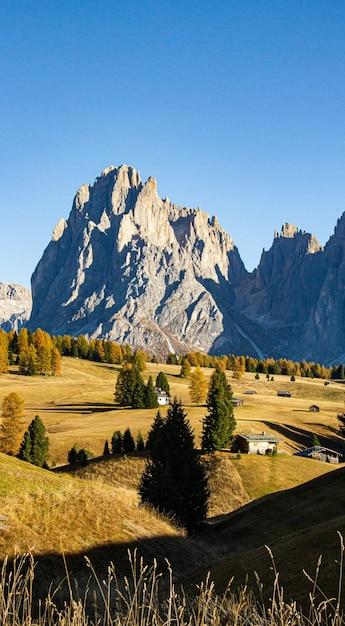 Colpo verticale di alberi ed edifici sulle colline con le montagne in lontananza nelle dolomiti italia Foto Gratuite