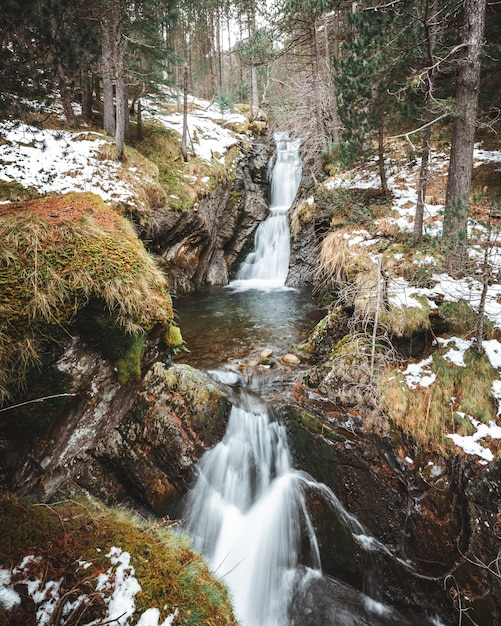 Vertical shot of waterfall cascades in the middle of the forest in winter Free Photo