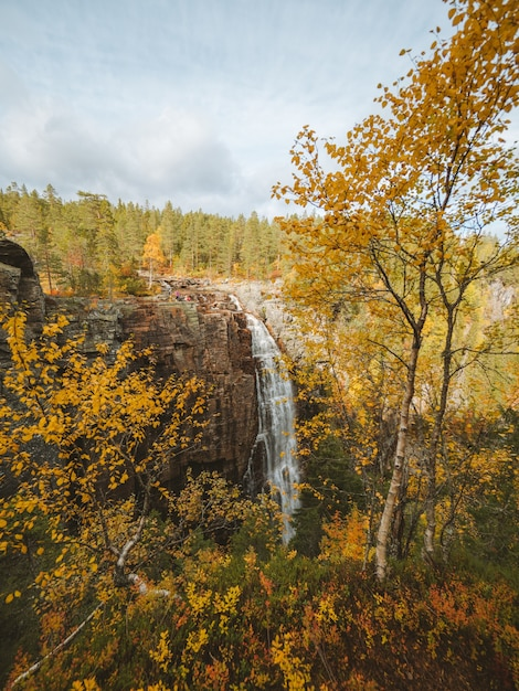 Vertical shot of a waterfall surrounded by a lot of trees with autumn colors in norway Free Photo