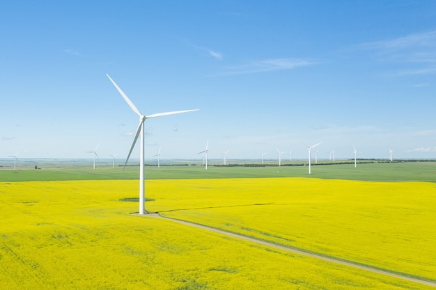 Vertical shot of wind generators in a large field during daytime Free Photo