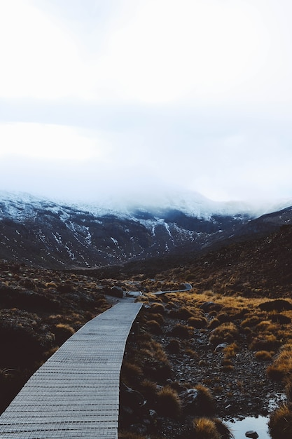 Vertical shot of a wooden pathway with the snow covered mountains Free Photo