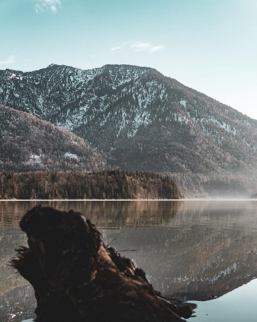 Vista verticale di un lago e di una montagna ricoperta di alberi e neve Foto Gratuite