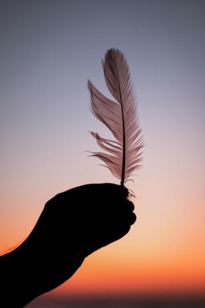 Vista verticale di una persona che tiene una piuma durante il tramonto Foto Gratuite