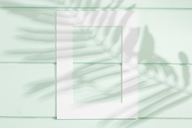 Vertical white frame with leaf shadow Free Photo