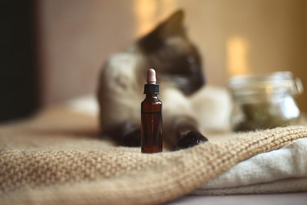 선택적 초점의 동물과 초점이 맞지 않는 배경의 샴 고양이를위한 Cbd 오일 바이알. 프리미엄 사진