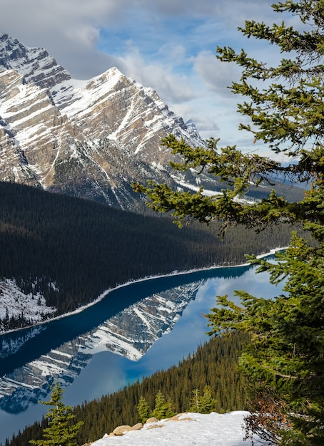 Vibrant blue peyto lake with reflection of canadian rocky mountain in alberta, canada. Premium Photo