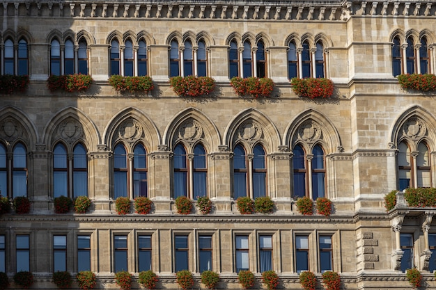 Вид фасада венской ратуши с красивыми окнами и деталями Premium Фотографии