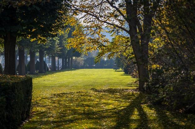 Венский городской парк ранней осенью с солнцем сквозь деревья Premium Фотографии