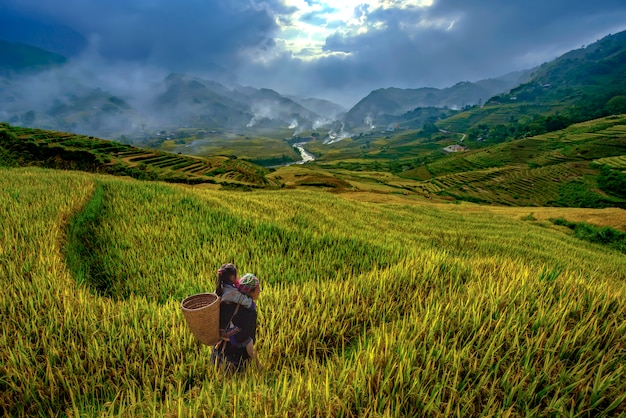 Vietnamese grandmother and young niece walking in the rice terraces to go to work in the morning of the harvest season in mu cang chai, yenbai, vietnam. Premium Photo