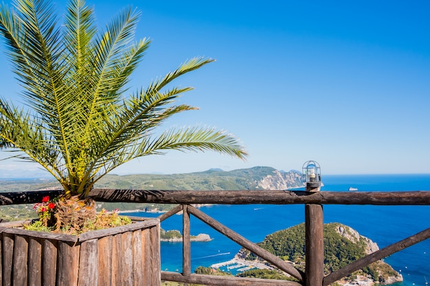 View on the bay and beach paleokastritsa with flowers Premium Photo