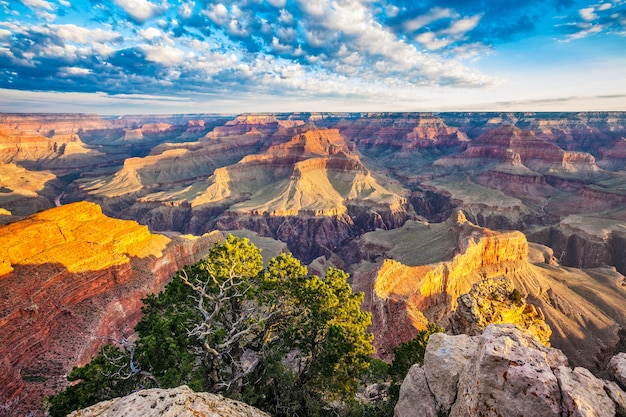 View of grand canyon with morning light, usa Free Photo