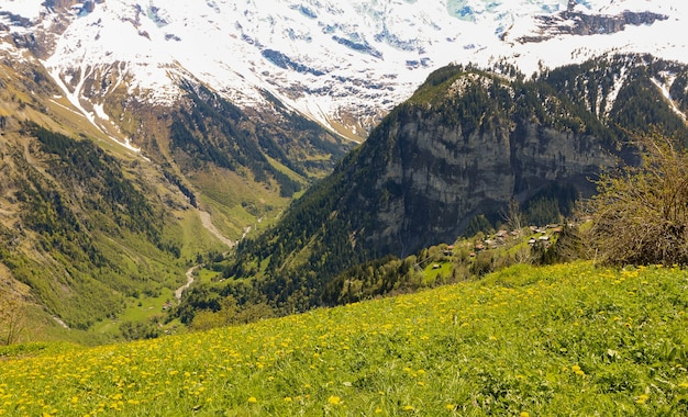 View of landscape in the alps at gimmelwald & murren villages in switzerland Premium Photo