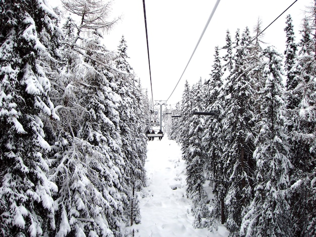 View of the lift with people and snow-covered firs, slovakia. winter season. Premium Photo