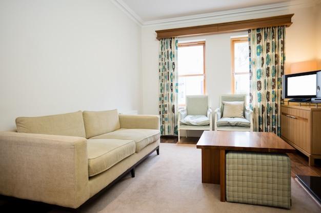 Living room windows ideas