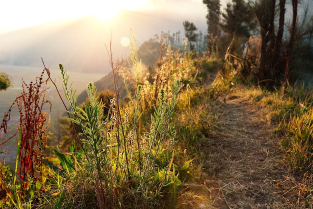 View of mountain with sunrise light, walkway along the line of mountain peak Premium Photo