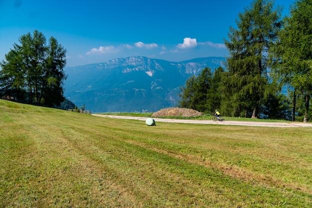 Вид на травянистое поле с деревьями и горами в солнечный день Бесплатные Фотографии