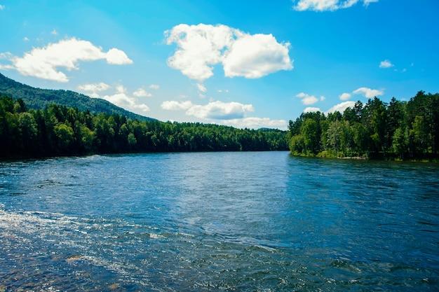 夏の広い山川の眺め Premium写真