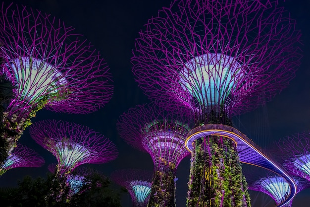 view of garden by the bay at night singapore premium photo - Garden By The Bay At Night