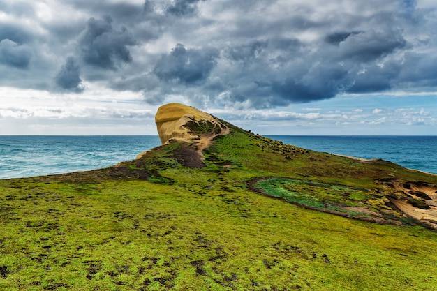 草とニュージーランドのトンネルビーチで太平洋の波で覆われた高い砂浜の崖のビュー Premium写真