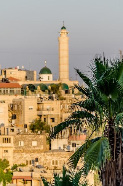 Вид на минарет и арабские дома в иерусалиме через пальмы в иерусалиме Premium Фотографии