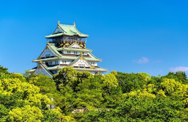 Вид на замок осаки в осаке, япония Premium Фотографии
