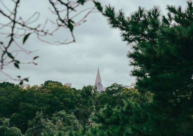 植生からの街の高層ビルの眺め 無料写真