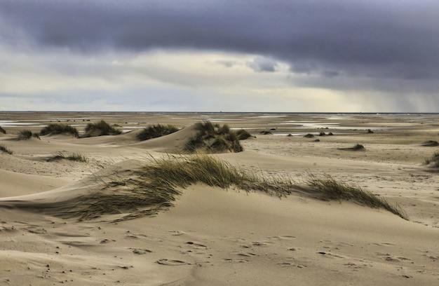 曇り空の下でドイツのアムルム島の砂丘の眺め 無料写真