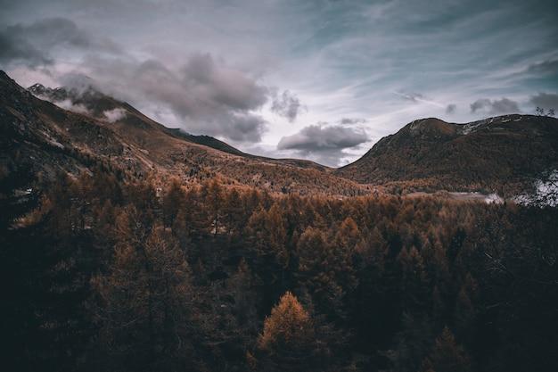 가을 안개가 자욱한 알프스 산맥에서보기 프리미엄 사진
