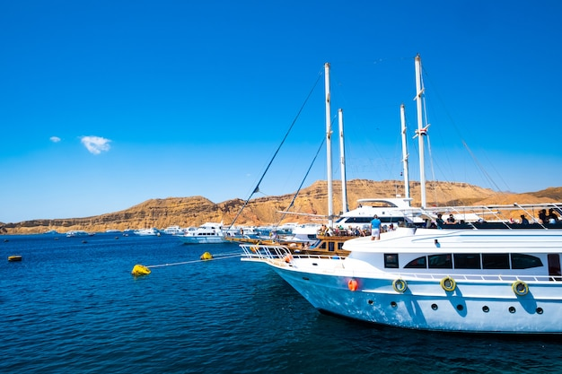 View on seaside with white yachts Premium Photo
