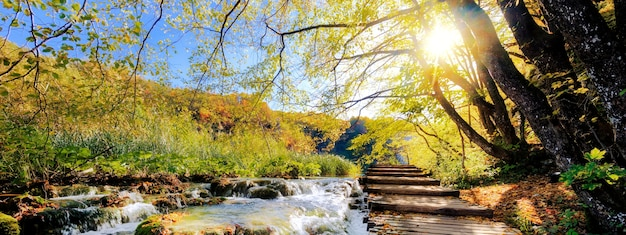View of waterfalls and pontoon in the sunshine in plitvice national park, croatia Premium Photo