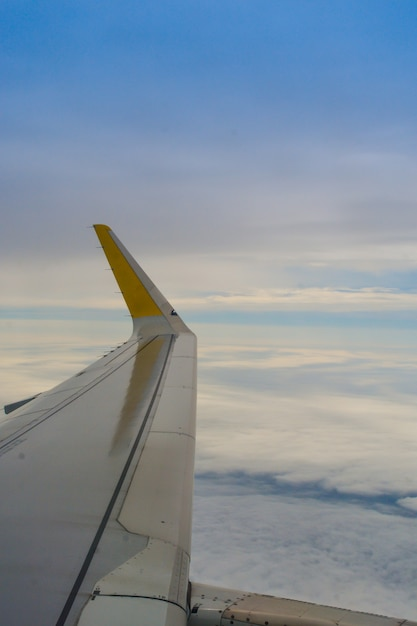 View of the wing of a commercial airplane. Premium Photo