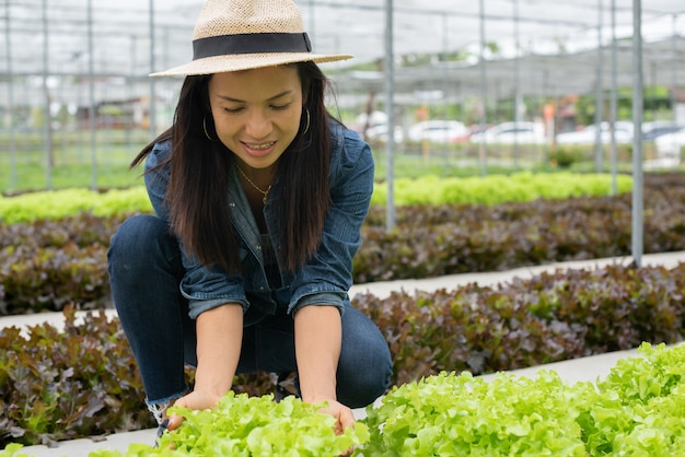 View of an young attractive woman harvesting vegetable Free Photo