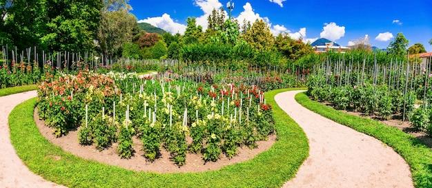 美しい庭園のあるヴィラタラント。イタリア北部、マッジョーレ湖の有名な場所 Premium写真