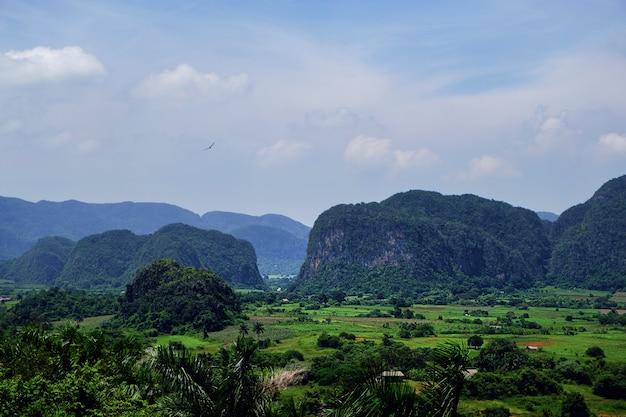 Vinales valley in cuba, national park in pinar del rio province Premium Photo