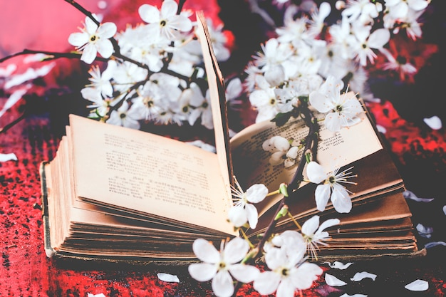 Vintage bible with blossom branch Premium Photo