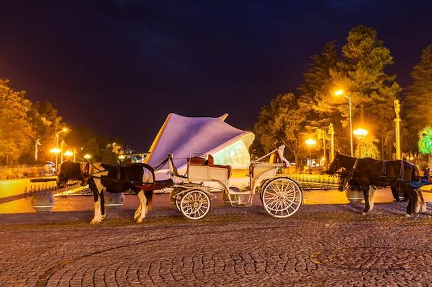 Vintage carriage, batumi Premium Photo