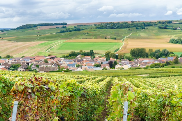 Vintage countryside at reims, reims is a city in northeastern france's historical champagne Premium Photo