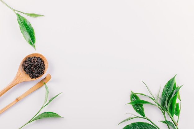 Vintage green tea leaf isolated on white background Premium Photo