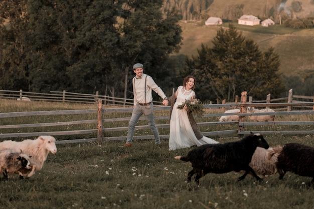 ピークの丘の上の馬と牧場で新郎新婦のビンテージのウェディング Premium写真